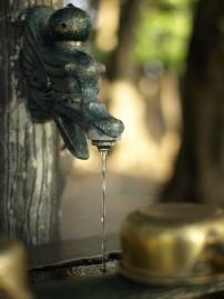 白山神社にて